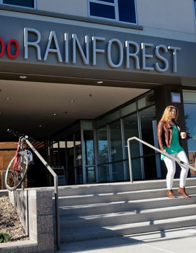 Lobo Rainforest Building